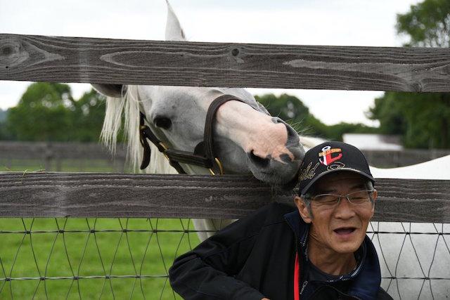 須貝「ゴールドシップは頭が良い」競馬ファン「ゴールドシップ頭が悪い」