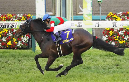 皐月賞馬エポカドーロが巻き返すと思っているヤツ