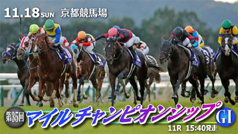 11/18(日) 第35回 マイルチャンピオンシップ(GⅠ) part6