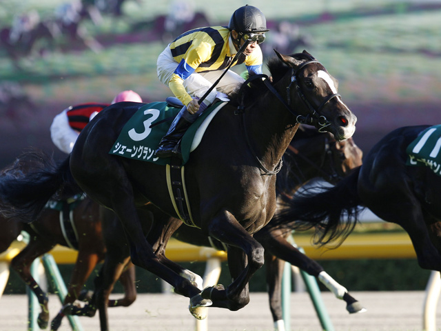 武豊騎手、阪神JFで今年最後のG1勝利最大のチャンス