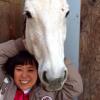 【速報】住友重機械工業労働組合から10億円横領した田村純子、実は競走馬も買っていた!!